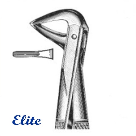 Extraction forceps, Lower Incisors and Roots (# ED2-041)