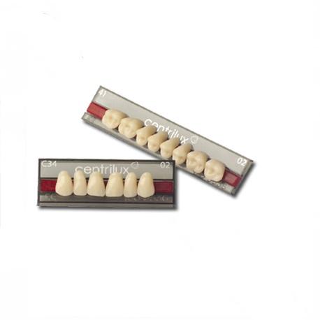 Acrylic Artificial Teeth, Anterior (Set of 6 Teeth)