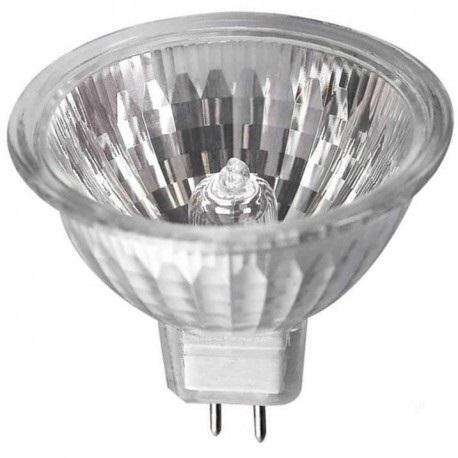 Halogen Bulb 12V