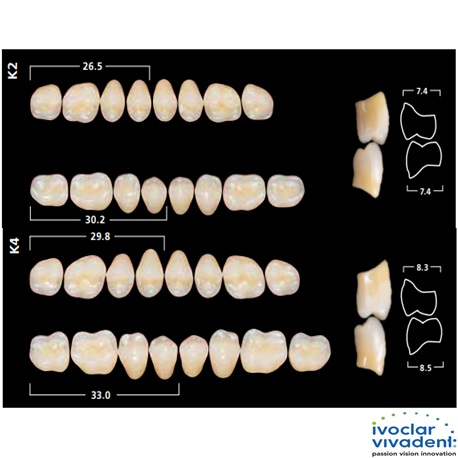 Ivoclar SR Orthotyp PE K Mould Posterior teeth For Cross Bite(set of 8)