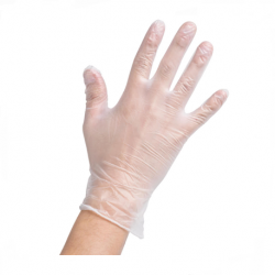 Vinyle Synthetic Examination Gloves Powder- Free