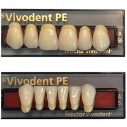 Ivoclar SR Vivodent PE Shade 1D For Anterior teeth  (set of 6)