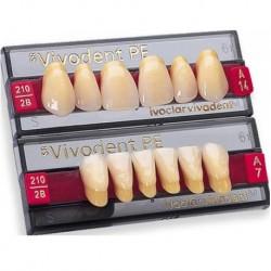 Ivoclar SR Vivodent PE Shade210/2B For Anterior teeth  (set of 6)