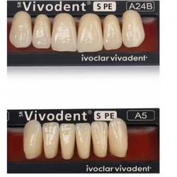 Ivoclar SR Vivodent PE Shade 140/1C For Anterior teeth  (set of 6)
