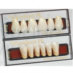 Ivoclar SR Vivodent PE Shade 130/2A For Anterior teeth  (set of 6)