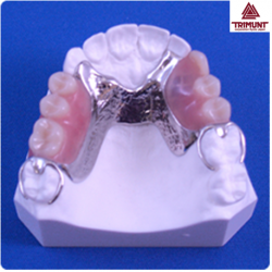 Pateint Education Model For Dentures