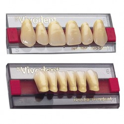 Ivoclar SR Vivodent PE Shade 1E For Anterior teeth  (set of 6)