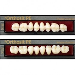 Ivoclar SR Orthosit PE N2 Mould Posterior teeth For Normal Bite(set of 8)