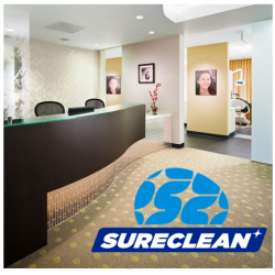 Professional Carpet Cleaning and Disinfection Services, from $0.40/psf