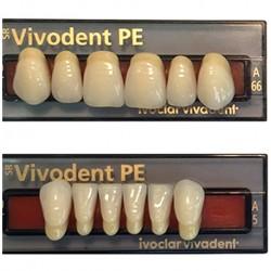 Ivoclar SR Vivodent PE Shade 6B For Anterior teeth  (set of 6)
