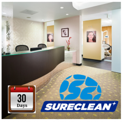 Professional Clinic Cleaning + Disinfection Service with Germclean 30 days Protection