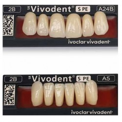 Ivoclar SR Vivodent PE Shade 2B For Anterior teeth  (set of 6)