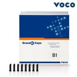 Voco Grandio- 20 Caps Universal Nano Hybrid Composite #B1