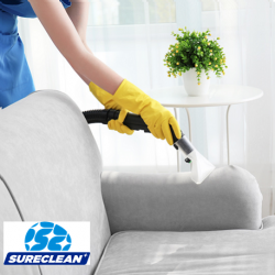 Professional Upholstery Cleaning Services (Wet cleaning with Stain Removal)